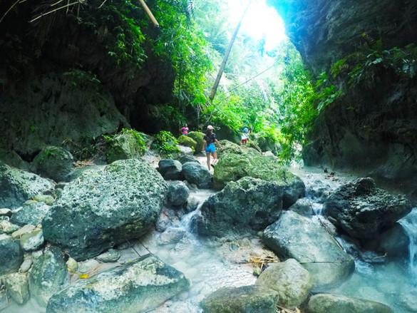 dau-trail
